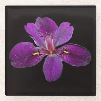 Posavasos De Vidrio Práctico de costa negro del vidrio de la flor del
