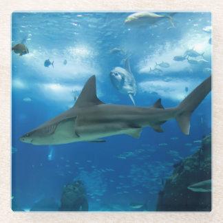 Posavasos De Vidrio Práctico de costa-Tiburones de cristal