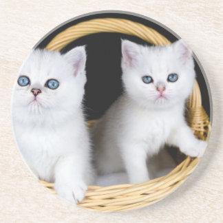 Posavasos Dos gatitos blancos en cesta en background.JP