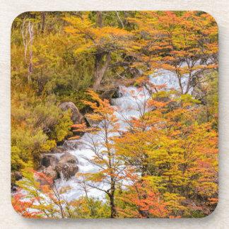 Posavasos Escena coloreada del paisaje del bosque, Patagonia
