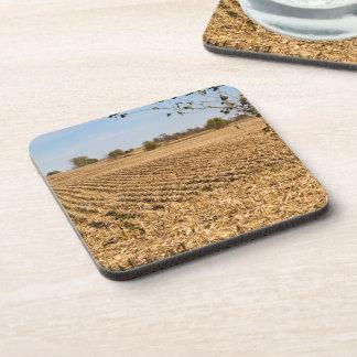 Posavasos Foto del panorama del campo de maíz de Iowa