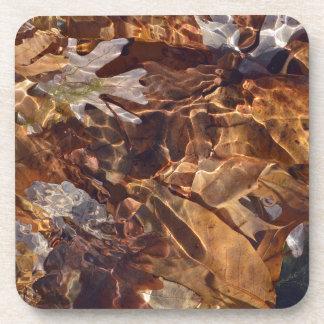 Posavasos Fotografía abstracta flotante Camo de las hojas de