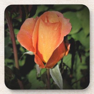 Posavasos Gotas del agua en color de rosa anaranjado