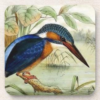 Posavasos Ilustracion del pájaro del vintage del martín