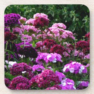 Posavasos Jardín de flores en verano