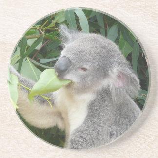 Posavasos Koala que come la hoja de la goma