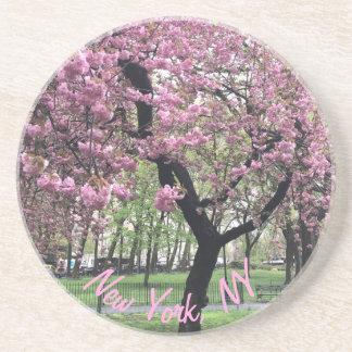 Posavasos Nueva York, árbol rosado Manhattan de la flor de