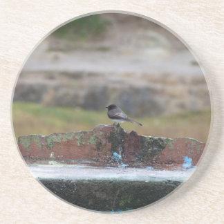 Posavasos pájaro en una pared