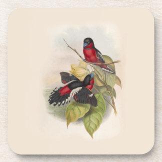 Posavasos Pájaros 002 del vintage