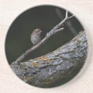 Posavasos Pequeño pájaro