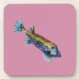 Posavasos Pescados geométricos