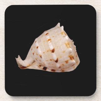 Posavasos Prácticos de costa plásticos duros de Shell de la