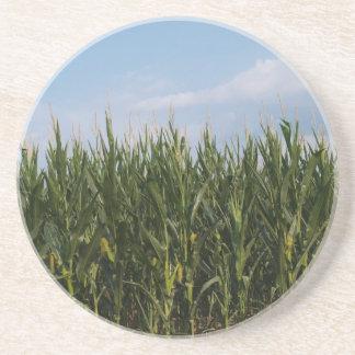 Posavasos Serie de la granja---Campo de maíz en el GA