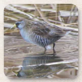 Posavasos Sora Waterbird