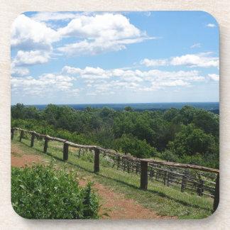 Posavasos Una visión desde Monticello