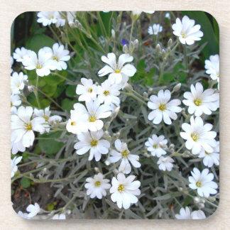 Posavasos Wildflowers blancos