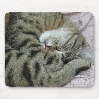 Posición torpe el dormir del gato alfombrilla de ratón