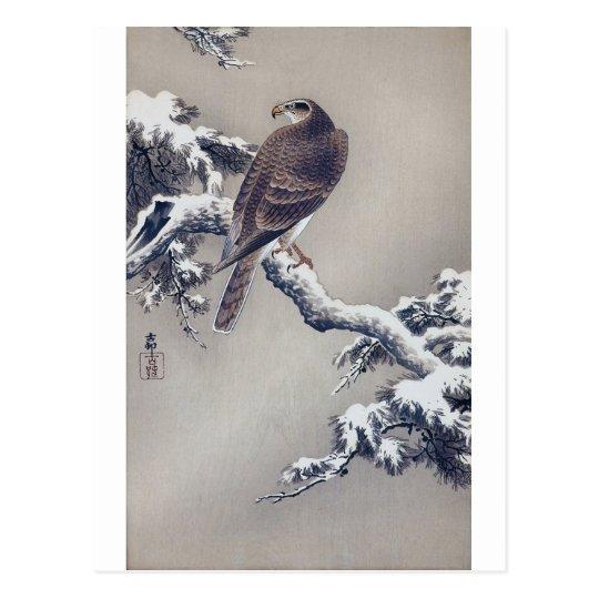 Postal 松に鷹, halcón del 古邨 en el árbol de pino, Ohara