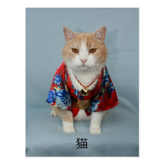 POSTAL 猫