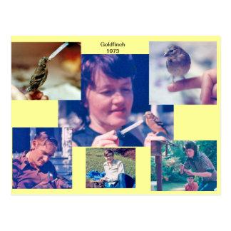 Postal 1973 de la historia del Goldfinch
