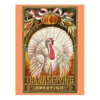 Postal Acción de gracias blanca Turquía del vintage