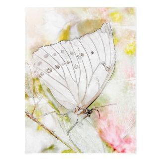Postal Acuarela blanca de la mariposa