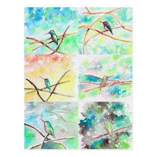 Postal Acuarela de la colección del colibrí