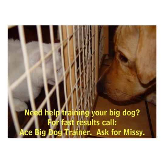 Postal Adiestrador de perros grande del as