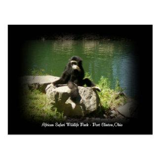 Postal africana de Ohio de la fauna del safari