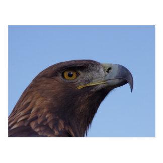 Postal Águila de oro