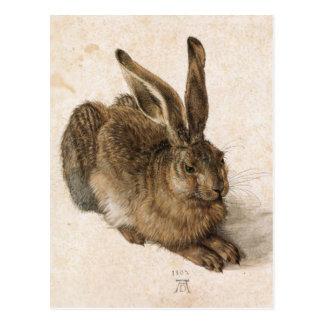 Postal Albrecht Dürer - Junger Hase (liebre joven), 1502