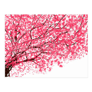 Postal alegre de la flor de cerezo