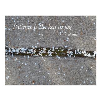 Postal Alegría de Rumi de los pétalos de la primavera