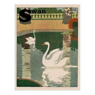 Postal Alfabeto del cisne