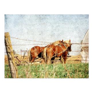 Postal Aliste para el trabajo, dos caballos de proyecto
