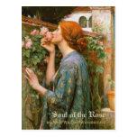 Postal Alma del Waterhouse del Pre-Raphaelite color de