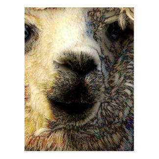 Postal Alpaca Lo saluda mundialmente