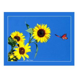 Postal Amarillo y azul
