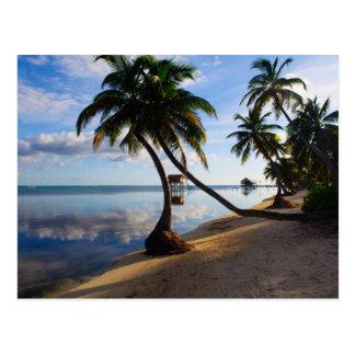 Postal Ambergris Caye Belice