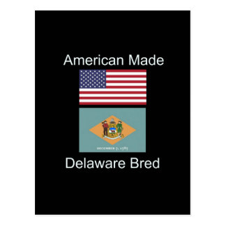 """Postal """"Americano llevado. Delaware crió"""" diseño de la"""