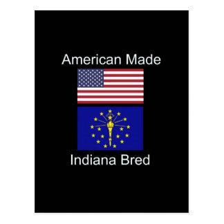 """Postal """"Americano llevado. Indiana crió"""" banderas y"""