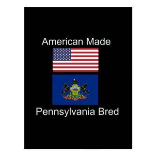 """Postal """"Americano llevado. Pennsylvania crió"""" diseño de"""