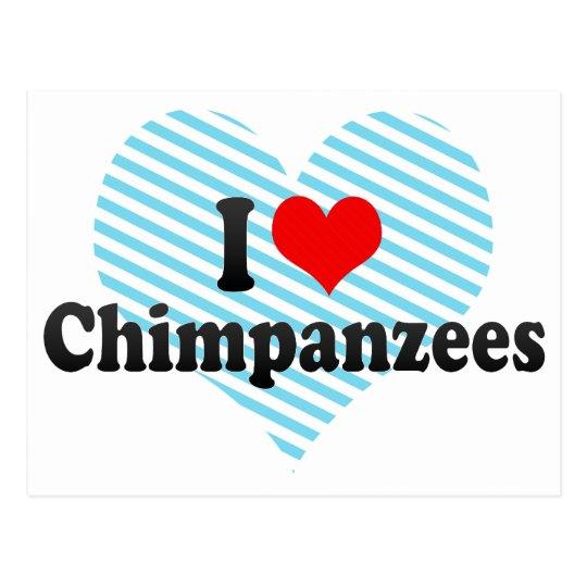 Postal Amo chimpancés