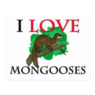 Postal Amo mangostas