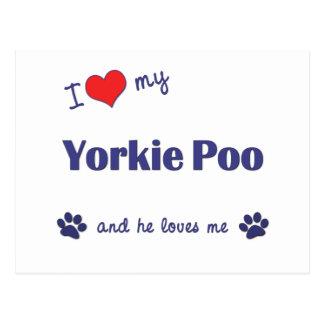 Postal Amo mi Yorkie Poo (el perro masculino)