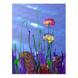 Postal Angelfish colorido 3d
