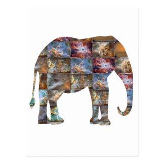 Postal Animal amistoso majestuoso: Tejas de mármol del