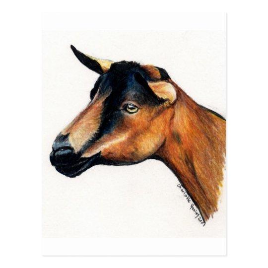 Postal animal del arte de la cabra de Oberhasli