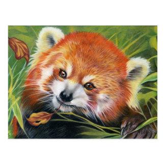 Postal animal del arte de la panda roja