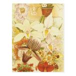 Postal Antigüedad de los flores de la flor de la orquídea